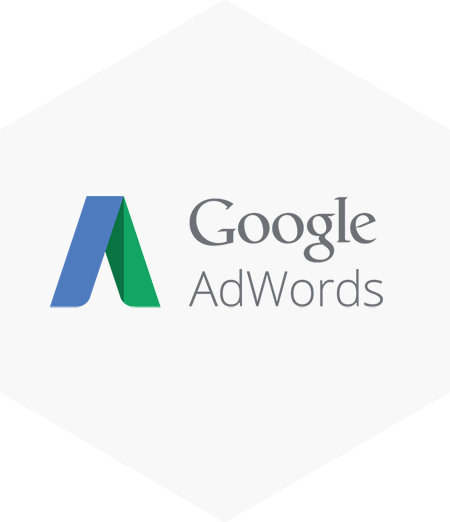 https://premiumitsolutions.com.au/wp-content/uploads/2016/12/Premium-IT-Solutions-Google-Adwords-Pay-Per-Click-Management.png